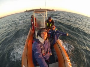 Dolphin crew on Expedition in Moreton Bay