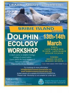 Dolphin Ecology Workshops 1